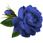 Flower Blue Rose Sticker