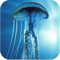 3D Jellyfish HD Live Wallpaper icon