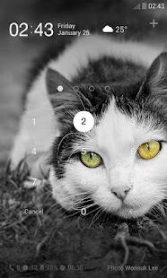 玩個人化App|Black and White Dodol Theme免費|APP試玩