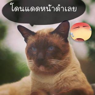 รูปคอมเม้นท์เฟสบุ๊ค รูปตลก 10 社交 App-愛順發玩APP