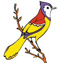 Kid Coloring – Bird Book logo