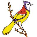 Kid Coloring – Bird Book logo