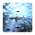 Shark Live Wallpaper free icon