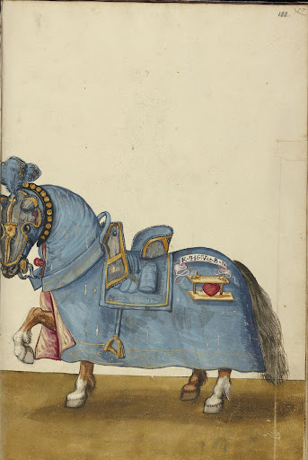 A Horse in Armor