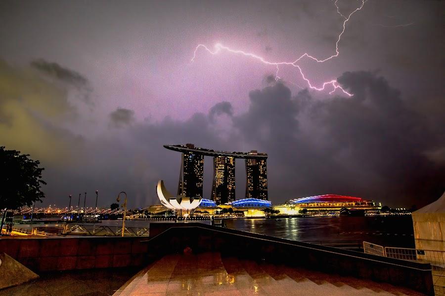 The Light Turn The Dragon by Bertoni Siswanto - City,  Street & Park  Night ( cityscapes, night photography, city lights, night shot, singapore, creativity, lighting, art, artistic, purple, mood factory, lights, color, fun )