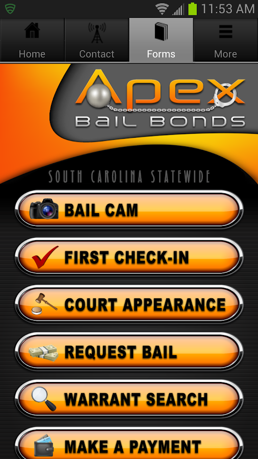 Apex Bail- screenshot