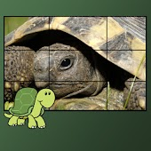turtles puzzles for kids