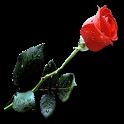 Romantik Resimler icon