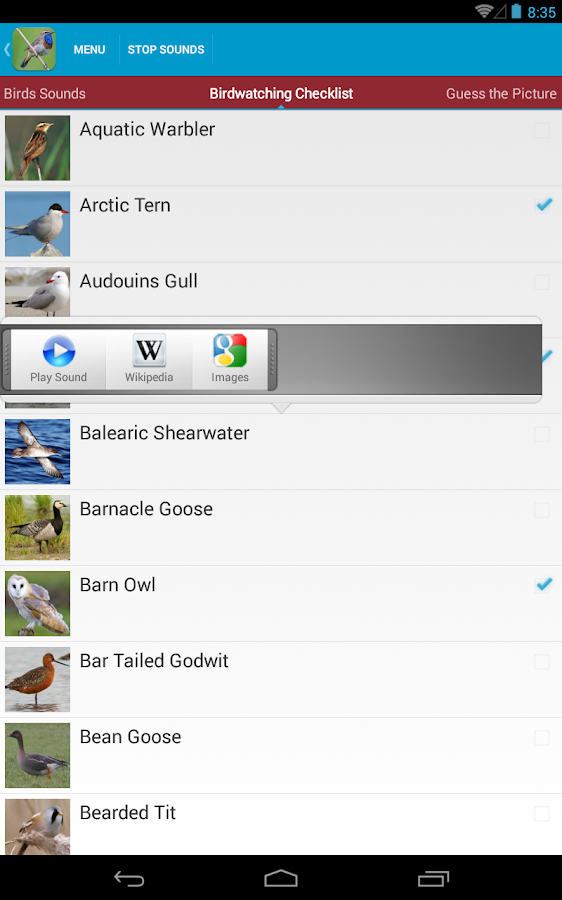 UK Birds Sounds Free - screenshot