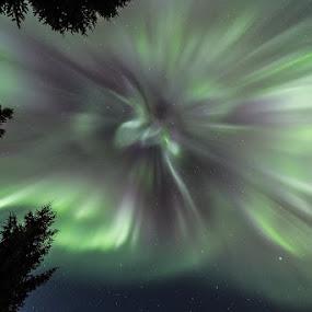 Aurora corona beauty by Benny Høynes - Landscapes Starscapes ( northernlights, aurora, boreoalis, norway, colours )