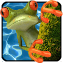 Jumping Frog icon