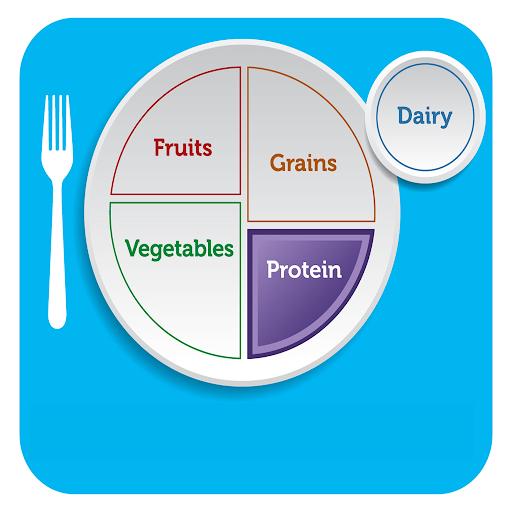 MyPlate Protein