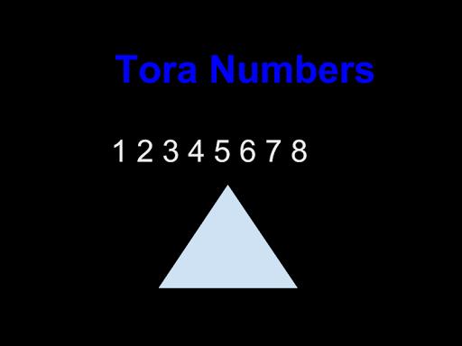 Tora Numbers