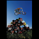 BMX illustrated