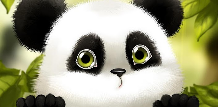 panda chub live wallpaper free android apps on google play
