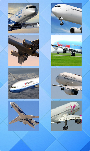 Plane Puzzle