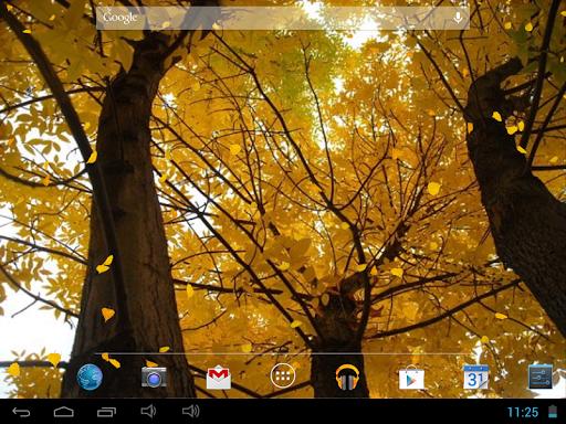 玩個人化App|美しい秋のライブ壁紙免費|APP試玩