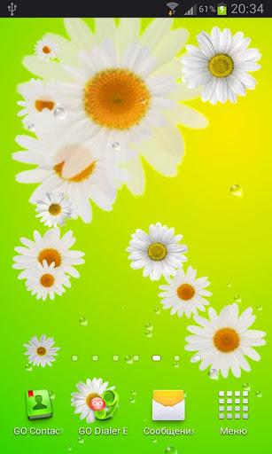 Flowers LWP Pro