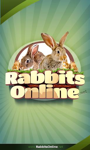 Rabbit Forum