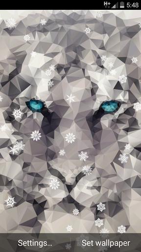 Snow Tiger - 3D Live Wallpaper
