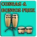 Конга (музыкальный инструмент)