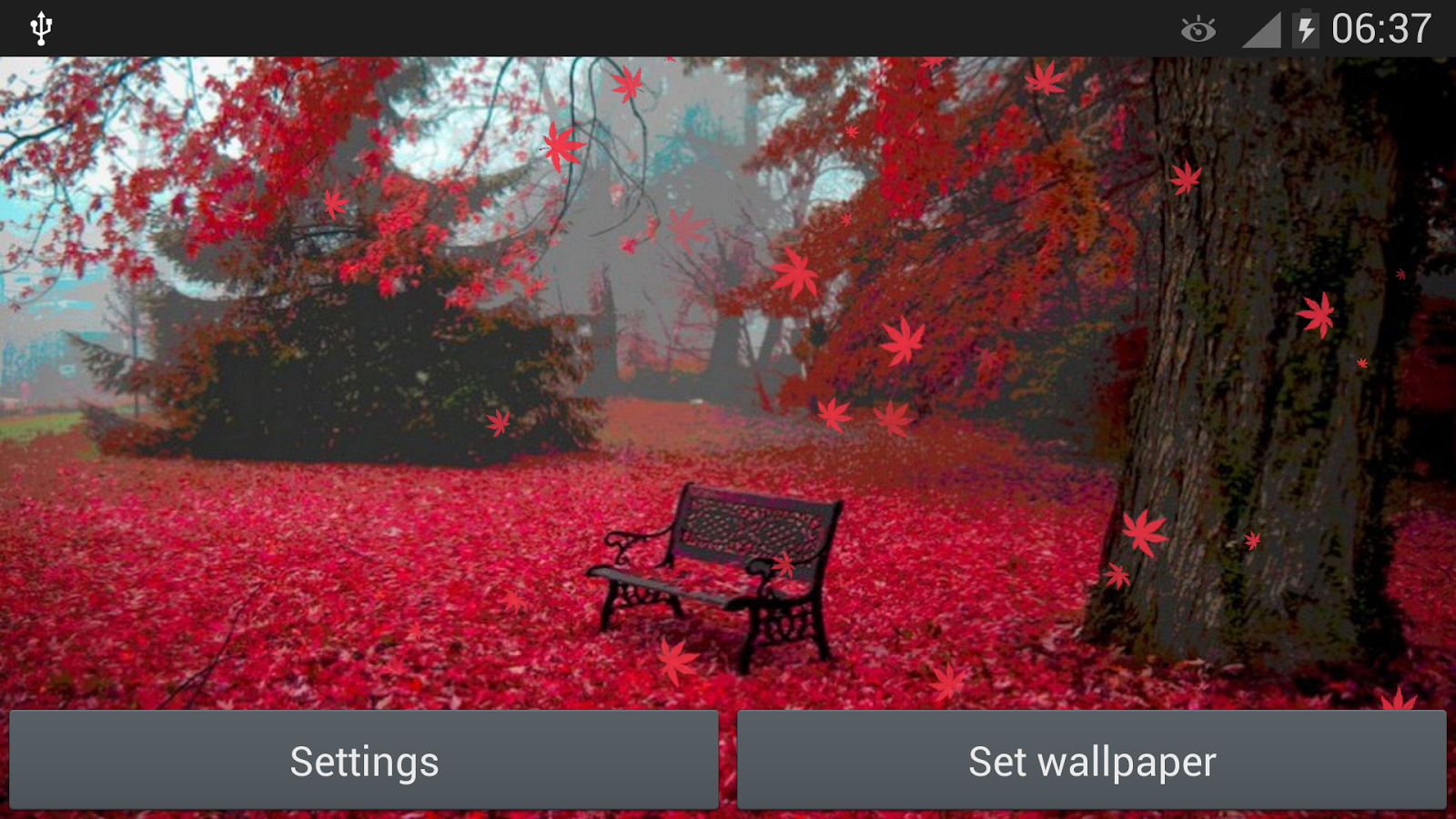 Red Leaves Live WallPaper- screenshot