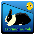 Bee Learn Animals for kids