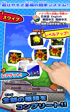 野の花図鑑 ~かんたん図鑑放置シリーズ~のおすすめ画像4