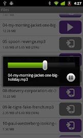 BitTorrent® Remote Screenshot 7