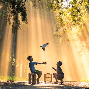 freedom by Anton Subiyanto - Babies & Children Children Candids ( ray of lights, candids, human interest, children, forest, sunrise, light, people, conceptual, birds )