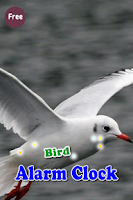 Screenshot of Bird Alarm