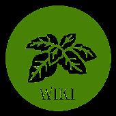Cây Thuốc Wiki