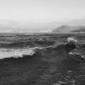 Waves by Irena Čučković - Black & White Landscapes ( water, wind, art photography, black and white, waves, danube, river )