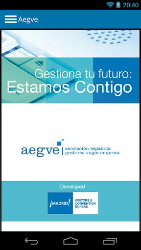 AEGVE - Seminario Anual 2013
