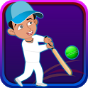 Box Cricket icon