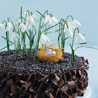Chocolate Cake with Crepe Paper Flowers and a Phyllo Nest.