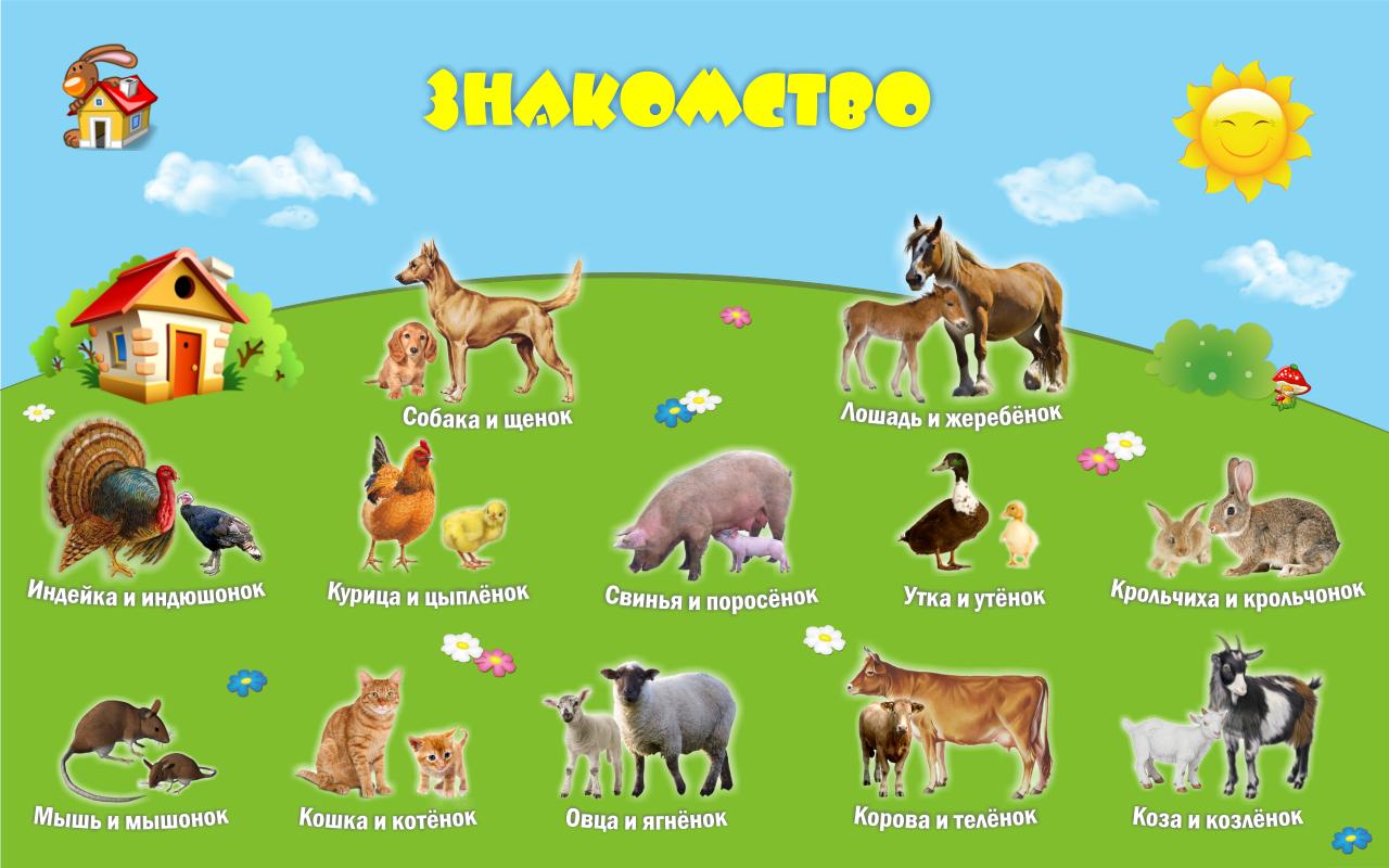 Как кричат животные для детей