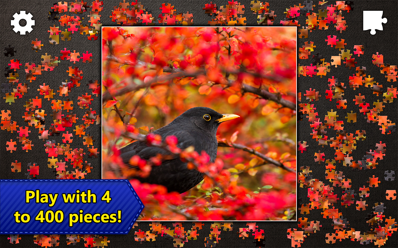 jigsaw puzzles epic android apps on google play