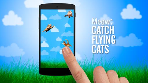 야옹 : 플라잉 고양이 를 잡아라