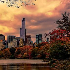 new york by Christian Heitz - City,  Street & Park  City Parks