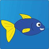Crazy Fish Adventures