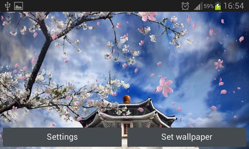 櫻花園動態壁紙