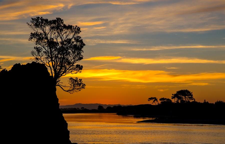 Whakatane Gold by Richard Duerksen - Landscapes Sunsets & Sunrises ( sunset, whakatane, sailboat, new zealand )
