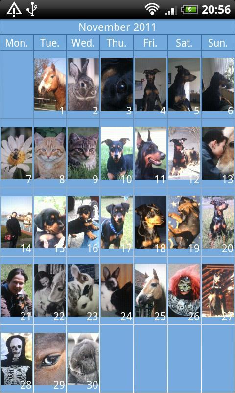 Daily Photo - photo diary- screenshot
