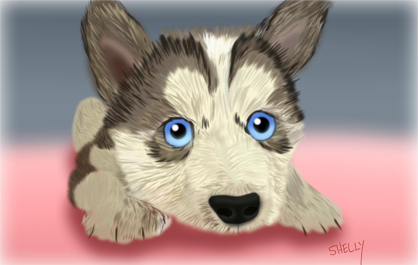 Puppy Dog Face Cartoon