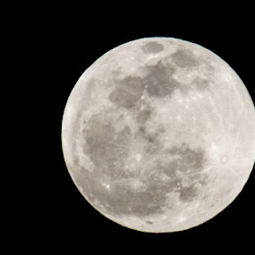 Full moon by Beckie Caughman - Landscapes Starscapes ( moon, sky, full, stars, night,  )