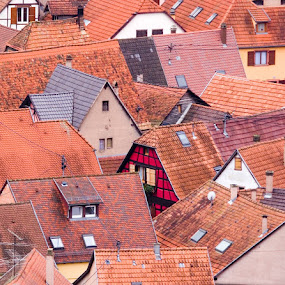 Rooftops Alsace, France. by Gale Perry - Buildings & Architecture Homes ( vertical lines, pwc,  )