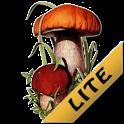 Грибы Беларуси LITE icon