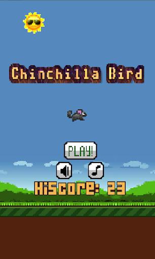 Chinchilla Bird