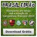 Brasileirão 2010 - Série A icon